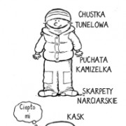 cebulka
